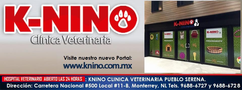 K-NINO CLINICA VETERINARIA. MONTERREY, NUEVO LEON